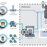 Proceso de gestión de la Fracción Orgánica de los Residuos Sólidos Urbanos (FORSU)